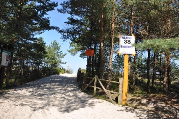 Rys. Wejście na plażę nr 38 w Lubiatowie.